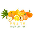 fruits food station fresh fruit background vector image