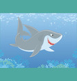 grey reef shark over a reef vector image
