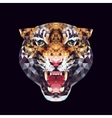 tiger polygonal graphics vector image