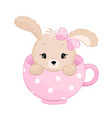 cute bagirl rabbit inside cup pastel vector image