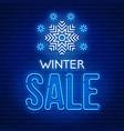 neon sign winter sale vector image