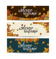 three autumn nature banners with colorful leaves vector image vector image