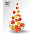 tomatoes falling into glass bowl isolated vector image vector image