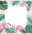 tropical border frame banner leaves flamingo birds vector image vector image