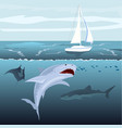 hungry shark attacks yacht ship from ocean water vector image