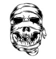 mummy skull with messy shroud for the vector image vector image