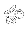 raw vegetables linear icon vegetarian diet vector image vector image
