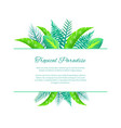 tropical paradise web poster design place for text vector image vector image