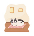 black and white pet cat resting on cushion cartoon vector image vector image