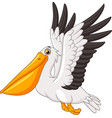 cartoon pelican flying vector image vector image