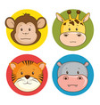 cute adorable animal icon set vector image