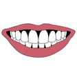 Hollywood smile white teeth vector image