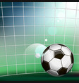 soccer ball in the soccer gate vector image