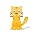 Cartoon tiger cat with shadow vector image vector image