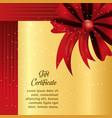 gift certificate design vector image vector image