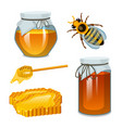 honey in jar bee and hive spoon and honeycomb vector image vector image