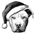 pitbull with christmas hat vector image vector image