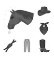 rodeo competition monochrome icons in set vector image