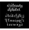 rosebeauty alphabet typography vector image vector image
