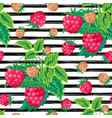 seamless pattern with raspberry on strips summer vector image vector image