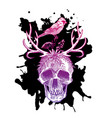 sketch skull vector image
