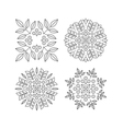 Floral Elements Printing for Natural Products vector image