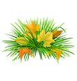 green grass with yellow leaves vector image vector image