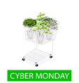 Green Trees in Cyber Monday Shopping Cart vector image vector image