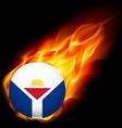 Round glossy icon of saint martin vector image