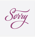sorry calligraphy text card vector image vector image
