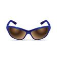 men sunglasses vector image