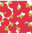 berry pattern raspberry seamless background food vector image