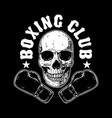 boxing club emblem template human skull with vector image vector image