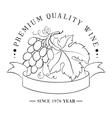 design logo for wine vector image vector image