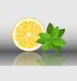 lemon and mint reslistic on vector image vector image