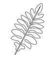 nature leave foliage botanical image isolated on vector image vector image