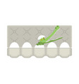 packing eggs hatched crocodile isolated vector image