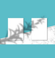 shadow overlay effect on a4 paper mockup vector image vector image