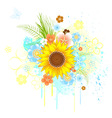 summer sunflower vector image