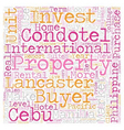 Why Condotels text background wordcloud concept vector image vector image
