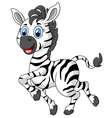 Zebra cartoon vector image