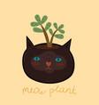 a flower pot in shape cat s head vector image
