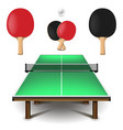 table tennis set isolated on white vector image vector image