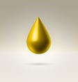 Golden drop vector image