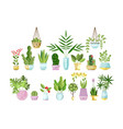 Set of flat style colorful houseplants in pots