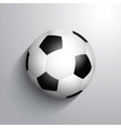 Soccer football on a monochrome background with vector image vector image