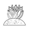 succulent plant icon vector image