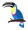 wildlife toucan icon cartoon style vector image