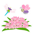 cartoon dragonfly and butterfly flying under vector image