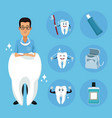 dentist and dental care cartoons vector image vector image